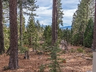 550-fairway-drive-tahoe-city-large-005-05-1499x1000-72dpi.jpg
