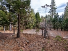 550-fairway-drive-tahoe-city-large-010-10-1499x1000-72dpi.jpg