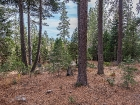 550-fairway-drive-tahoe-city-large-012-12-1499x1000-72dpi.jpg